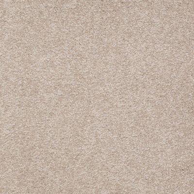 Shaw Floors SFA Timeless Appeal III 12′ Soft Shadow 00105_Q4314