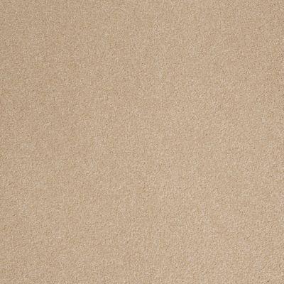 Shaw Floors SFA Timeless Appeal III 12′ Stucco 00110_Q4314