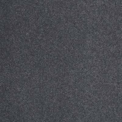 Shaw Floors SFA Timeless Appeal III 12′ Cadet 00401_Q4314