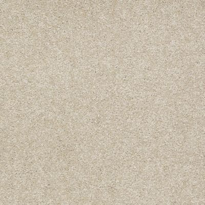 Shaw Floors Anso Premier Dealer Great Effect I 12′ Country Haze 00307_Q4327
