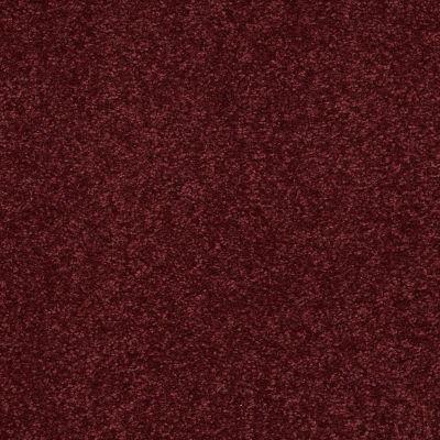 Shaw Floors Anso Premier Dealer Great Effect II 12′ Rutabaga 00801_Q4329