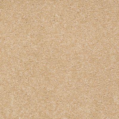 Shaw Floors Anso Premier Dealer Great Effect III 12′ Cornfield 00202_Q4331