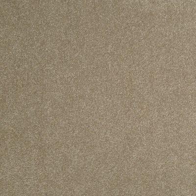 Shaw Floors Anso Premier Dealer Great Effect III 12′ Chinchilla 00306_Q4331