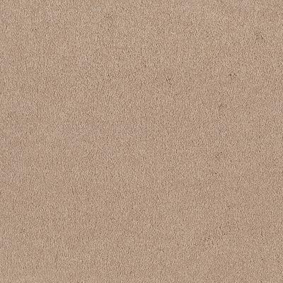 Shaw Floors Shaw Floor Studio Bright Spirit I 12 Cashew 00106_Q4648