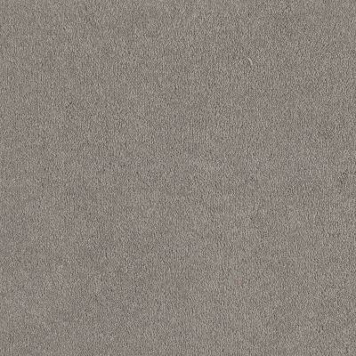 Shaw Floors Shaw Floor Studio Bright Spirit I 12 Silver Charm 00500_Q4648