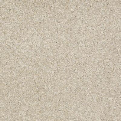 Shaw Floors Shaw Floor Studio Bright Spirit I 15′ Country Haze 00307_Q4649