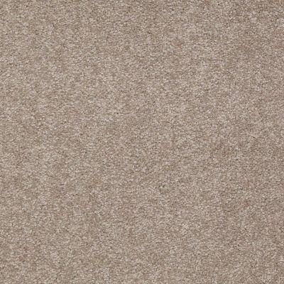 Shaw Floors Shaw Floor Studio Bright Spirit II 12′ Chinchilla 00306_Q4650