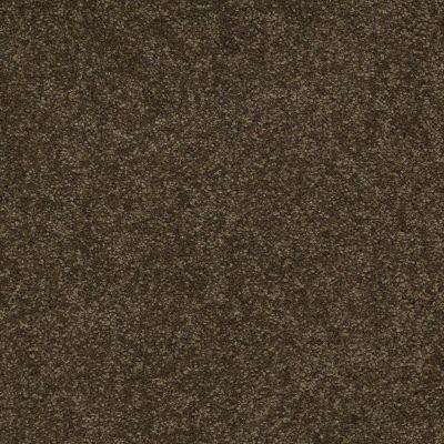 Shaw Floors Shaw Floor Studio Bright Spirit II 15′ Tropic Vine 00304_Q4651