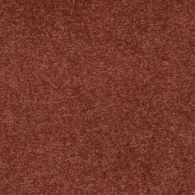 Shaw Floors Shaw Floor Studio Bright Spirit II 15′ Spanish Tile 00601_Q4651