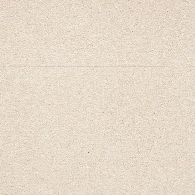 Shaw Floors Shaw Floor Studio Bright Spirit III 15′ Almond Flake 00200_Q4653