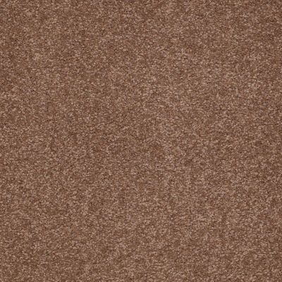 Shaw Floors Shaw Floor Studio Bright Spirit III 15′ Tuscany 00204_Q4653