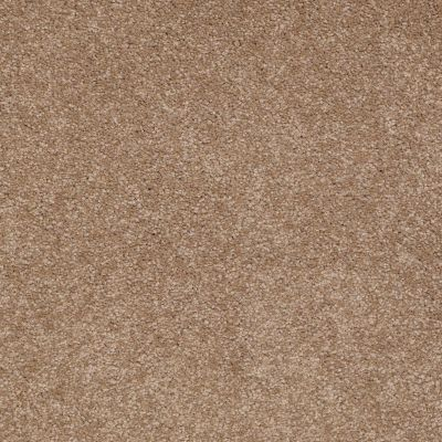 Shaw Floors Shaw Floor Studio Bright Spirit III 15′ Mojave 00301_Q4653