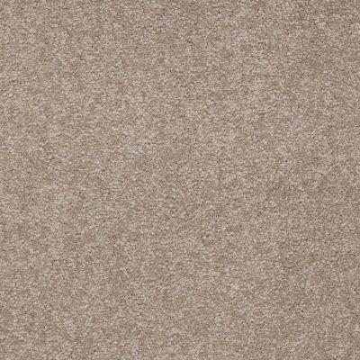 Shaw Floors Shaw Floor Studio Bright Spirit III 15′ Chinchilla 00306_Q4653