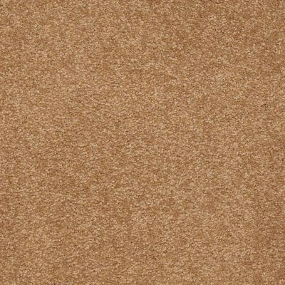 Shaw Floors Shaw Floor Studio Bright Spirit III 15′ Peanut Brittle 00702_Q4653