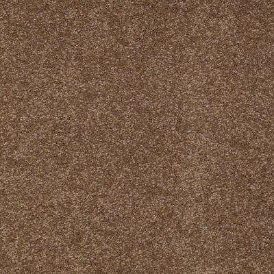 Shaw Floors Shaw Floor Studio Bright Spirit III 15′ Pine Cone 00703_Q4653