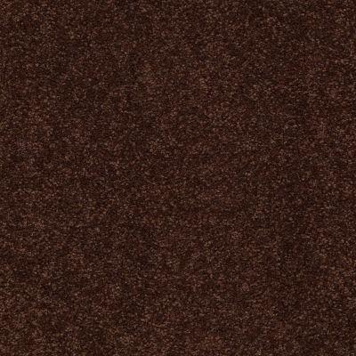 Shaw Floors Shaw Floor Studio Bright Spirit III 15′ Coffee Bean 00711_Q4653