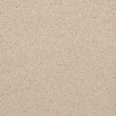 Shaw Floors SFA Versatile Design I 12′ Cream 00101_Q4688