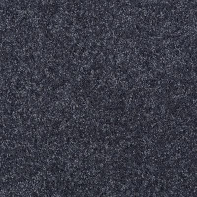 Shaw Floors SFA Versatile Design I 12′ Denim 00401_Q4688