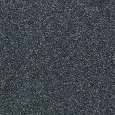 Shaw Floors SFA Versatile Design I 12′ Tropical Surf 00406_Q4688