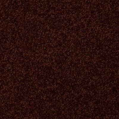 Shaw Floors SFA Versatile Design I 12′ Fresh Coffee 00708_Q4688