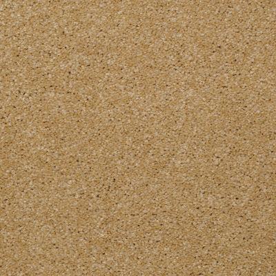 Shaw Floors SFA Versatile Design II Butter 00200_Q4689