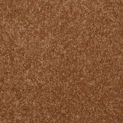 Shaw Floors SFA Versatile Design II Pecan Shell 00203_Q4689