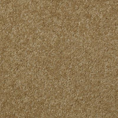 Shaw Floors SFA Versatile Design II Celery 00300_Q4689