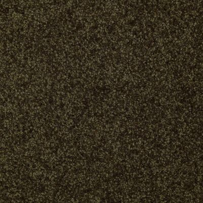 Shaw Floors SFA Versatile Design III Pine 00304_Q4690
