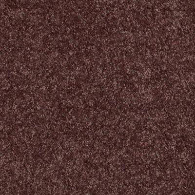 Shaw Floors SFA Versatile Design III Plum 00900_Q4690