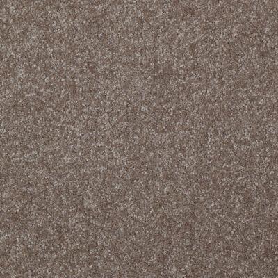 Shaw Floors Queen Harborfields I 12′ Field Stone 00111_Q4718