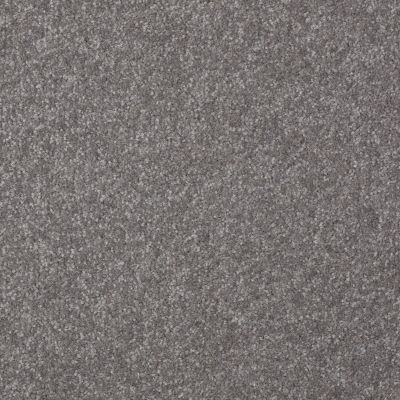 Shaw Floors Queen Harborfields I 12′ Pewter 00501_Q4718