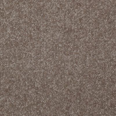 Shaw Floors Queen Harborfields I 15′ Field Stone 00111_Q4719