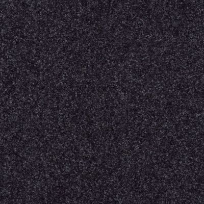 Shaw Floors Queen Harborfields I 15′ Midnight Sky 00407_Q4719