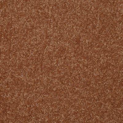 Shaw Floors Queen Harborfields I 15′ Soft Copper 00600_Q4719