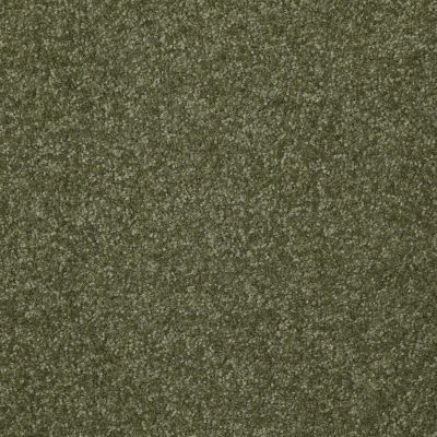 Shaw Floors Queen Harborfields II 12′ Sage Leaf 00302_Q4720