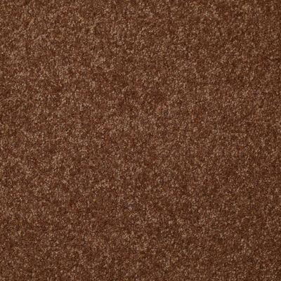 Shaw Floors Queen Harborfields II 12′ Toasty 00710_Q4720