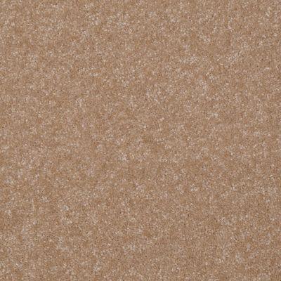 Shaw Floors Queen Harborfields II 15′ Muffin 00106_Q4721