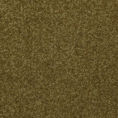Shaw Floors Queen Harborfields II 15′ Green Apple 00303_Q4721