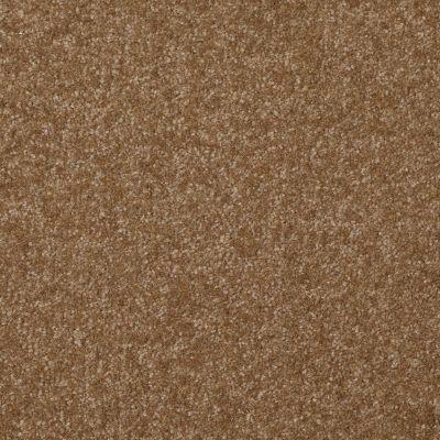 Shaw Floors Queen Harborfields II 15′ Belt Buckle 00702_Q4721