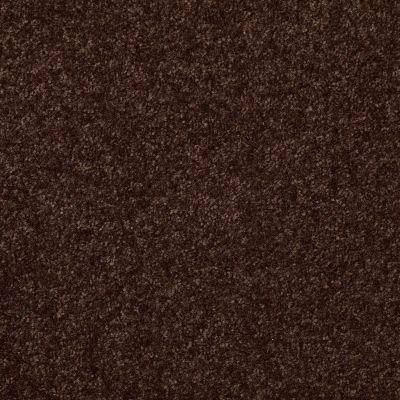Shaw Floors Queen Harborfields II 15′ Walnut 00706_Q4721