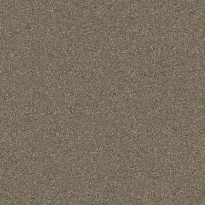 Shaw Floors Queen Harborfields III 12′ Field Stone 00111_Q4722