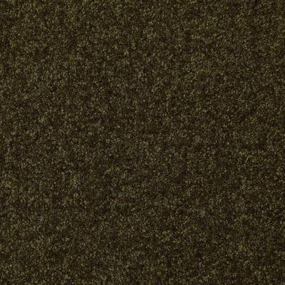 Shaw Floors Queen Harborfields III 12′ Pine 00304_Q4722