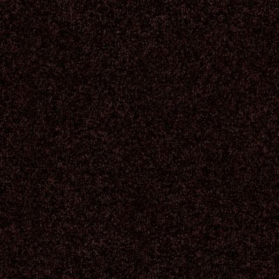 Shaw Floors Queen Harborfields III 12′ Dark Roast 00709_Q4722