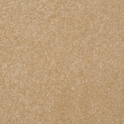 Shaw Floors Queen Harborfields III 15′ Butter 00200_Q4723
