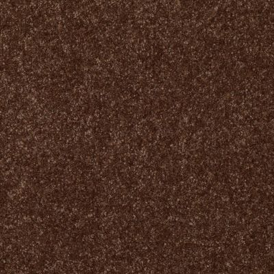 Shaw Floors Queen Harborfields III 15′ Mocha Chip 00705_Q4723