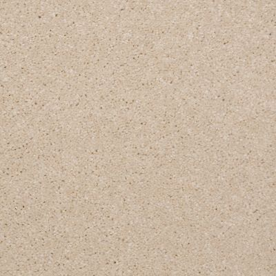 Shaw Floors Queen Versatile Design I 15′ Cream 00101_Q4784