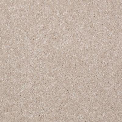 Shaw Floors Queen Versatile Design I 15′ Cloud 00102_Q4784