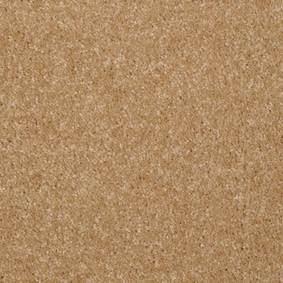 Shaw Floors Queen Versatile Design I 15′ Straw Hat 00201_Q4784