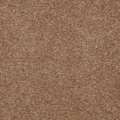 Shaw Floors Queen Versatile Design I 15′ Ash Blonde 00701_Q4784