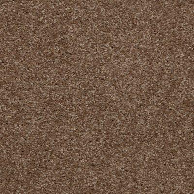 Shaw Floors Queen Versatile Design I 15′ Jute 00703_Q4784